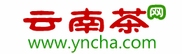 云南茶网-大叶种