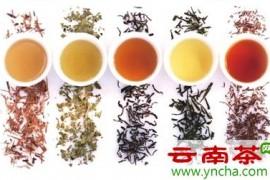 三招教你选好茶