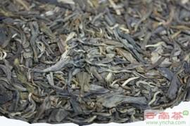 普洱生茶是什么茶?什么是普洱茶生茶?
