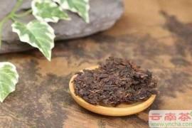 普洱茶陈化和霉化的鉴别