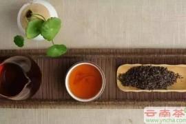 冲泡普洱茶为什么要用高温?