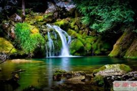 冲泡普洱茶有讲究——水的选择