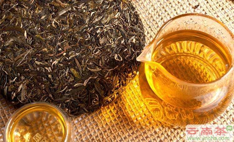 普洱茶和黑茶.jpg