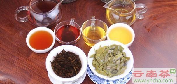 普洱生茶和熟茶的区别.jpg