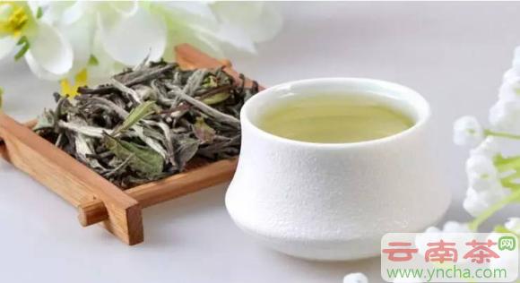 白茶的保健功效.png