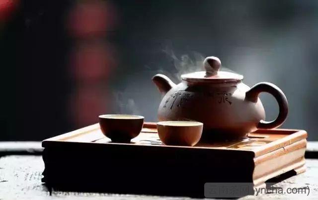 爱上喝茶的理由.jpeg