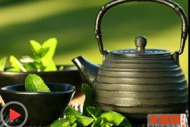 茶,一片树叶的故事第6集:一碗茶汤见人情