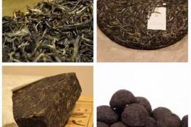 普洱茶的分类