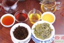 普洱茶生茶和熟茶哪个减肥效果好?