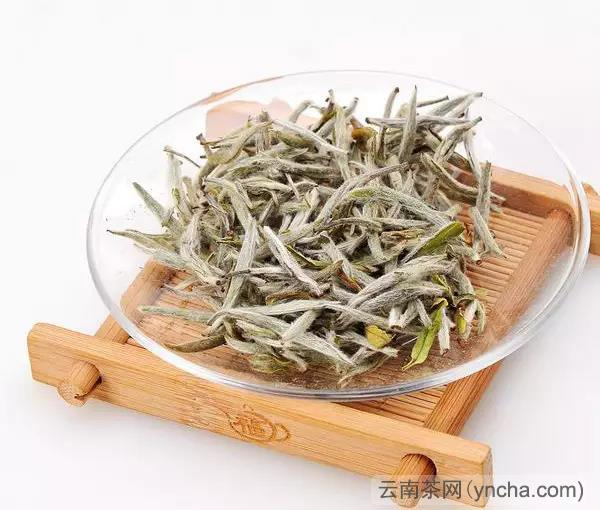 黄茶.jpg